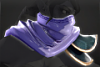 120px-cosmetic_icon_scarf_of_the_deadly_nightshade.png